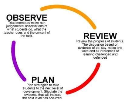 observe-plan-review