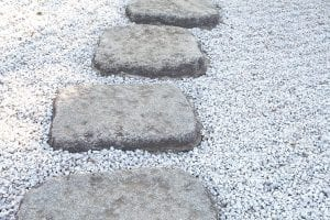 the path - stumbling blocks or stepping stones